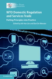 WTO Domestic Regulation and Services Trade - Putting Principles into Practice ebook by Aik Hoe Lim,Bart De Meester