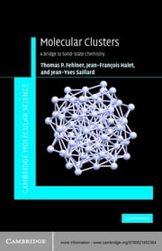 Molecular Clusters - A Bridge to Solid-State Chemistry ebook by Thomas Fehlner,Jean-Francois Halet,Jean-Yves Saillard