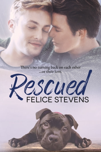 Rescued ebook by Felice Stevens