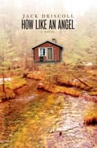 How Like an Angel - A Novel ebook by Jack Driscoll