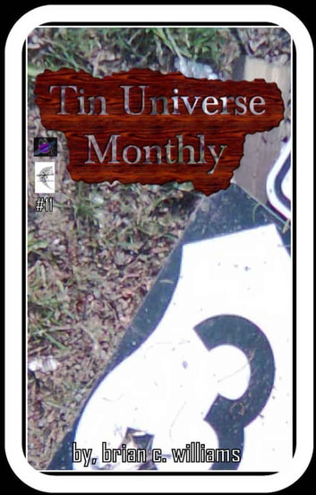 Tin Universe Monthly #11 ebook by Brian C. Williams