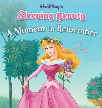 sleeping beauty a moment to remember disney press