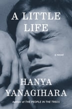 A Little Life, A Novel