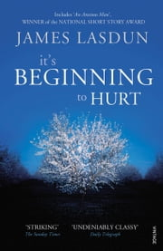 It's Beginning To Hurt ebook by James Lasdun