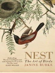 Nest - The art of birds ebook by Janine Burke