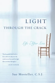 Light Through the Crack - Life After Loss ebook by Sue Mosteller