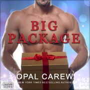 Big Package audiobook by Opal Carew