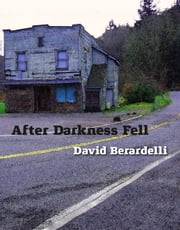 After Darkness Fell ebook by David Berardelli