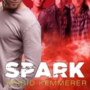 Spark audiobook by Brigid Kemmerer