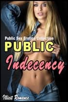 Public Indecency: Public Sex Erotica Collection ebook by Illicit Romance