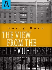 The View from the Vue ebook by Larry Karp