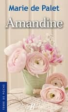 Amandine ebook by Marie de Palet