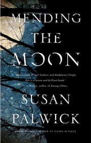 Mending the Moon ebook by Susan Palwick