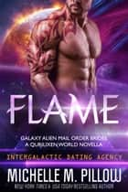 Flame: A Qurilixen World Novella - Intergalactic Dating Agency 電子書 by Michelle M. Pillow