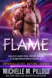 Flame: A Qurilixen World Novella - Intergalactic Dating Agency ebook by Michelle M. Pillow