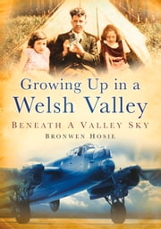 Growing Up in a Welsh Valley - Sunshine on the Mayfield ebook by Bronwen Hosie