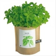 A Crash Course on How to Grow Basil ebook by Linda Cooper