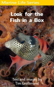 Look for the Fish in a Box ebook by Tim Grollimund