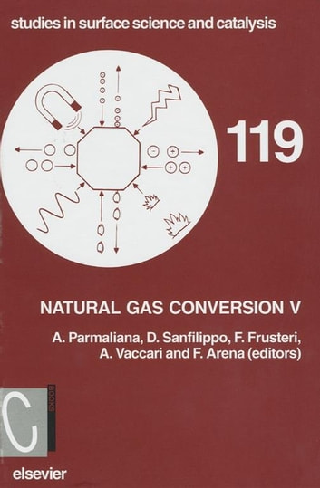Natural Gas Conversion V ebook by