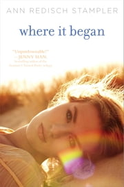 Where It Began ebook by Ann Redisch Stampler
