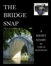 The Bridge Snap: A Flash of Romance ebook by Tyrean Martinson