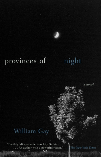 Provinces of Night - A Novel ebook by William Gay