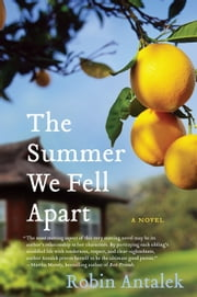 The Summer We Fell Apart - A Novel ebook by Robin Antalek