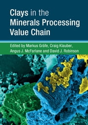 Clays in the Minerals Processing Value Chain ebook by Markus Gräfe, Craig Klauber, Angus J. McFarlane,...
