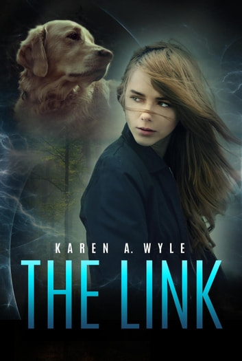 The Link ebook by Karen A. Wyle