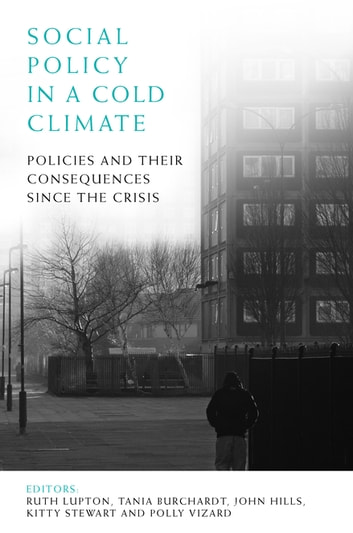 Social policy in a cold climate - Policies and their consequences since the crisis ebook by