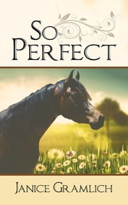 So Perfect ebook by Janice Gramlich