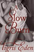 A Slow Burn ebook by Tigris Eden, Wolf Paw Publications