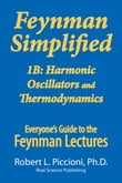 Feynman Lectures Simplified 1B