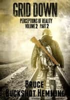 Grid Down Perceptions of Reality - Volume 2 Part 2 ebook by Bruce Buckshot Hemming