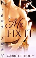 Mr. Fix-It ebook by Gabrielle Holly
