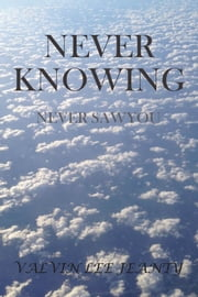 Never Knowing: Never Saw You ebook by Valvin Lee Jeanty