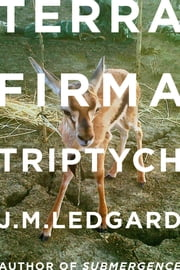 Terra Firma Triptych - When Robots Fly ebook by J. M. Ledgard