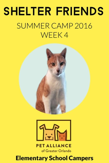 Shelter Friends Summer Camp 2016: Week 4 ebook by Elementary School Campers
