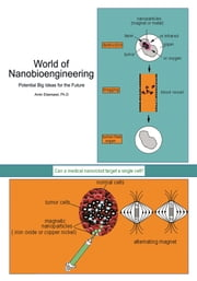 World of Nanobioengineering - Potential Big Ideas for the Future ebook by Amin Elsersawi, Ph.D