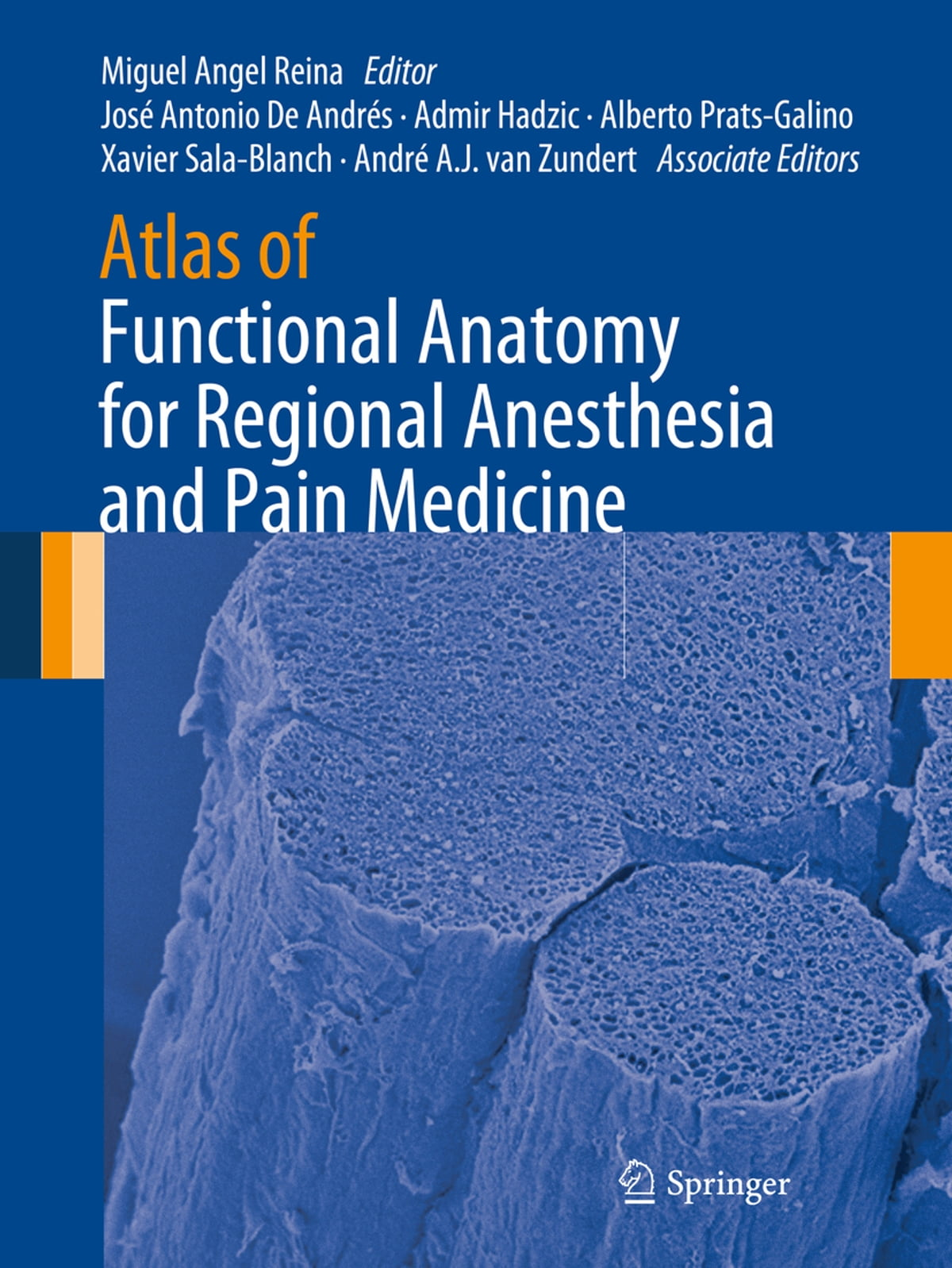 Atlas Of Functional Anatomy For Regional Anesthesia And Pain