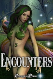 Changeling Encounter: Night Watch (Dragon's Watch) ebook by Shelby Morgen