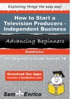 How to Start a Television Producers - Independent Business ebook by Dedra Parr