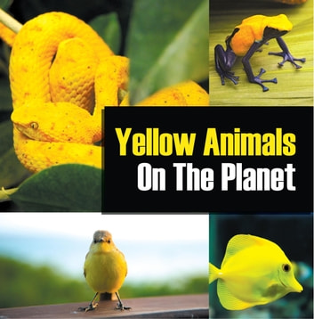 Yellow Animals On The Planet - Animal Encyclopedia for Kids ebook by Baby Professor
