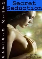 Dirty Stories: Secret Seduction, Erotic Tales ebook by E. Z. Lay