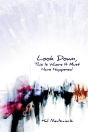 Look Down, This is Where It Must Have Happened ebook by Hal Niedzviecki