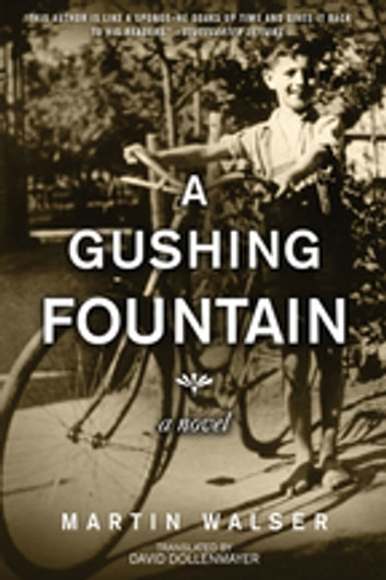 A Gushing Fountain - A Novel ebook by Martin Walser