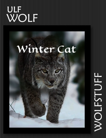 Winter Cat ebook by Ulf Wolf