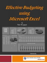 Effective Budgeting using Microsoft Excel ebook by Palani Murugappan