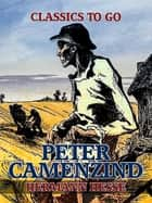 Peter Camenzind ebook by Hermann Hesse