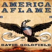 America Aflame - How the Civil War Created a Nation Audiolibro by David Goldfield
